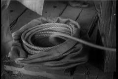Koński fracht z arkaną dołączającą gubi koła zdjęcie wideo