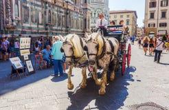 Koński frachtu i ulicy malarz w Florencja, Włochy Obraz Royalty Free