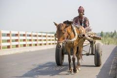 Koński i fura w wiosce Gorpara, Manikgonj, Bangladesz obrazy stock