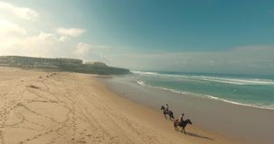 Koński jeździec na plaży zdjęcie wideo
