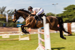 Koński jeździec prędkości plamy skok Zdjęcie Stock