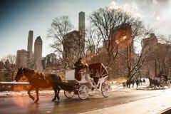 Koński Kareciany przejażdżki central park NYC zdjęcie royalty free