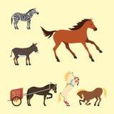 Koński konika ogier odizolowywał różnych trakeny barwi rolnego equestrian charakterów wektoru zwierzęcą ilustrację ilustracji