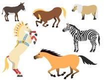 Koński konika ogier odizolowywał różnych trakeny barwi rolnego equestrian charakterów wektoru zwierzęcą ilustrację Obrazy Stock