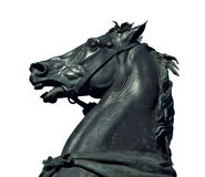 Koński rzeźba szczegół zdjęcie royalty free
