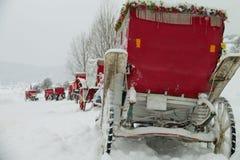 Koński samochód pod śniegiem Abant, Bolu, Turcja - fotografia royalty free