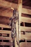 Końskie hals rzeczy zdjęcia stock