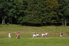 Końskie jeździeckie lekcje Zdjęcia Royalty Free