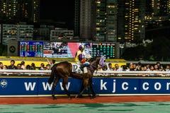 Końskiej rasy Szczęśliwy Dolinny racecourse Hong Kong Fotografia Royalty Free