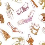 Kość bezszwowy wzór royalty ilustracja