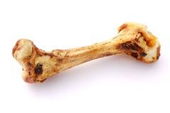 kość duży pies Obrazy Royalty Free