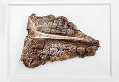 Kość stek Zdjęcia Royalty Free