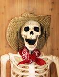 Kośćcowy rolnik z bandanami zdjęcia royalty free