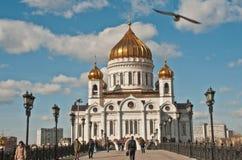 Kościół Chrystus wybawiciel w Moskwa, dnia strzał Obrazy Royalty Free