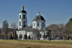 Kościół ikona matka bóg ` wiosny daje ` Obrazy Royalty Free