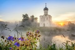 Kościół intercesja na Nerl w Bogolyubovo, Rosja Obrazy Royalty Free