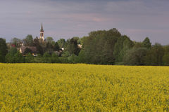 Kościół Katolicki Leutersdorf Zdjęcie Royalty Free