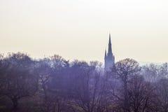Kościół wierzchołek w mgłowym lesie Zdjęcia Royalty Free