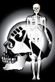 Kości czaszki ogienia orzeł Obrazy Royalty Free