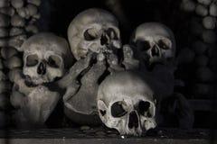 Kości Grobowcowe z 40.000 kościami inside Zdjęcia Stock