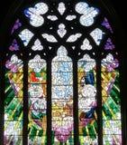 Kościelny okno w świętego David Katedralnym Hobart, Tasmania obrazy royalty free