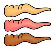 Koślawy kreskówka nos, marchwiany nos dla czarownicy lub bałwan ikona, symbol, projekt Zimy wektorowa ilustracja odizolowywająca  Zdjęcie Stock