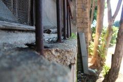 Końcówka okno z starymi barami, pobliscy drzewa Zdjęcie Stock