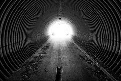 Końcówka tunel Fotografia Royalty Free