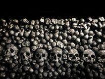 kości czaszki Zdjęcia Royalty Free