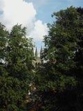 kościelny wierza drzewa Zdjęcia Royalty Free