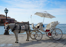 Koń i fracht Zdjęcie Royalty Free