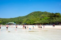 Ko Lan wyspa Obrazy Royalty Free