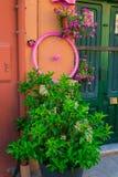 Koło kwiaty Zdjęcia Stock