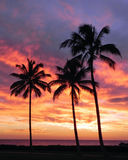 Ko Olona solnedgång Arkivfoton