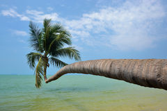 Ko phangan Strand lizenzfreies stockfoto