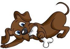 kość pies Obrazy Royalty Free