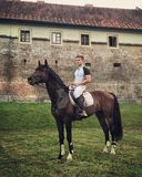 Koń przed motykami zdjęcia royalty free