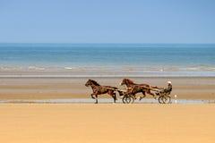 2 koń race Obraz Stock