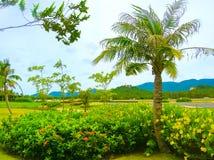 Ko Samui, Thailand - landningsbana av den inhemska flygplatsen för Samui ö i solig dag arkivbilder