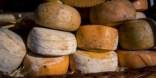 Koła ser Zdjęcie Stock