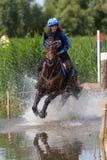 Koński bieg przez wody Zdjęcia Royalty Free