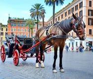 Koński fracht dla turystów Zdjęcia Royalty Free