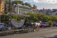 Koński fracht na ulicie w Karlovy Zmienia grodzkiego czeka Repu Obrazy Royalty Free