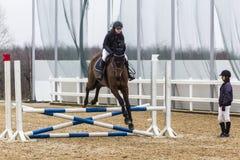 Koński przeszkoda kurs i parkour Fotografia Royalty Free