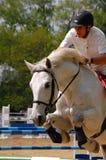 Koński szkolenia przedstawienie Zdjęcia Royalty Free
