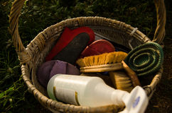 Końskiego cleaning ustalony kosz Obraz Royalty Free