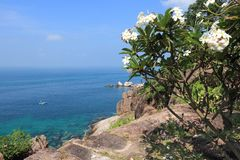 Ko Tao, Ταϊλάνδη Στοκ Εικόνα