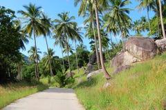 Ko Tao, Thailand Arkivbilder