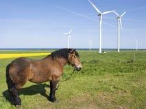 koń turbiny wiatr Obraz Royalty Free