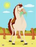 Koń w Dzikiej Zachodniej ilustraci Obraz Royalty Free